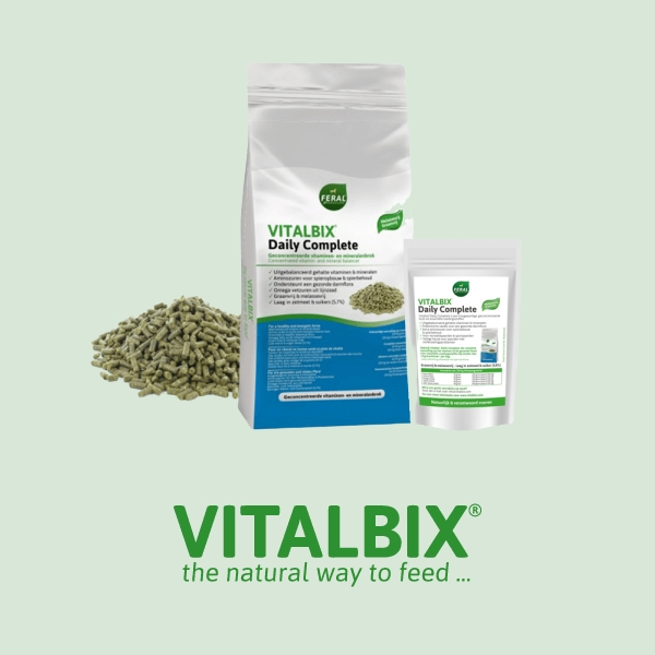 Vitalbix Daily Complete
