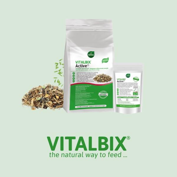 Vitalbix Active+
